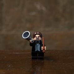 71022-15 - professor flitwick