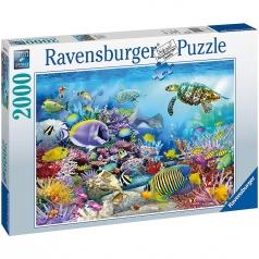 barriera corallina - puzzle 2000 pezzi