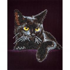 midnight cat - diamond dotz intermediate dd5.001
