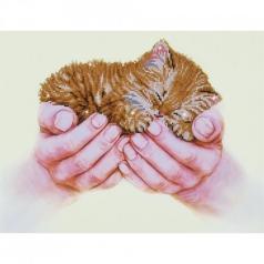 precious kitten - diamond dotz intermediate dd7.011 52x40cm