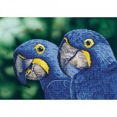 blue hyacinth macaws - diamond dotz intermediate dd9.023 52x37cm