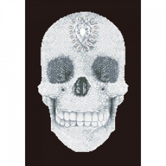 crystal skull - diamond dotz intermediate dd10.021 42x60cm