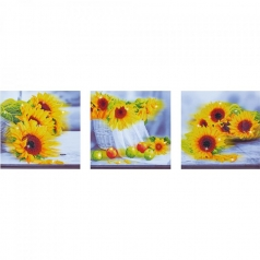 sunflower days - diamond dotz advanced dd14.001 142x42cm