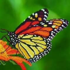 monarch - diamond dotz intermediate 50452 30,48x30,48cm