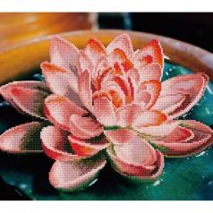 lotus - diamond dotz advanced 49387 37x42cm
