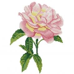 pink rose - diamond dotz intermediate dd5.069 27,7x35,7cm