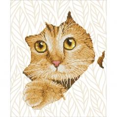 kitten peek - diamond dotz intermediate dd7.052 37x45 cm