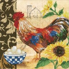 country rooster - diamond dotz intermediate dd9.049 41x41cm