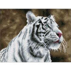 tiger blanc - diamond dotz squares dq8.007 41x31cm