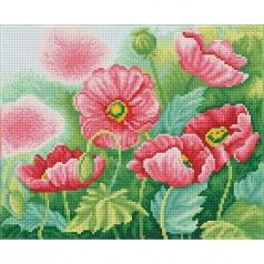 watercolor poppies - diamond dotz squares dq8.024 37x30cm
