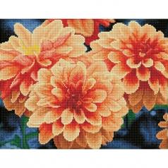 peach dahlias - diamond dotz squares dq9.004 45x35cm