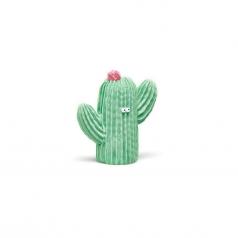 cactus fiorito verde