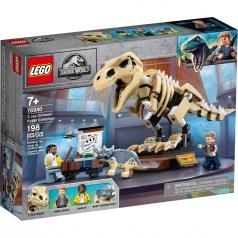 76940 - la mostra del fossile di dinosauro t. rex