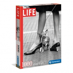 life collection - chihuahua - puzzle 1000 pezzi
